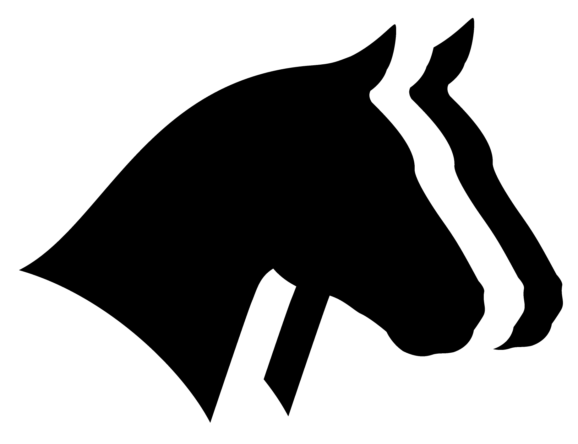 Horse Report System