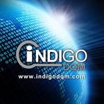 Indigo DQM