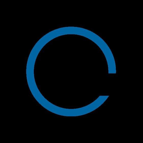 Visual Lease logo
