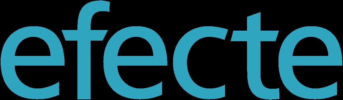 Efecte IAM logo