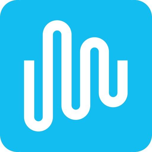 Intulse logo