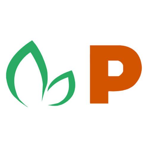 Pappaya logo