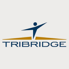 Tribridge Offender360