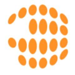 accel<>DS Data Integrator logo