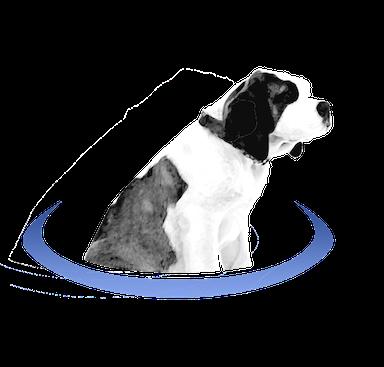 BerniePortal logo
