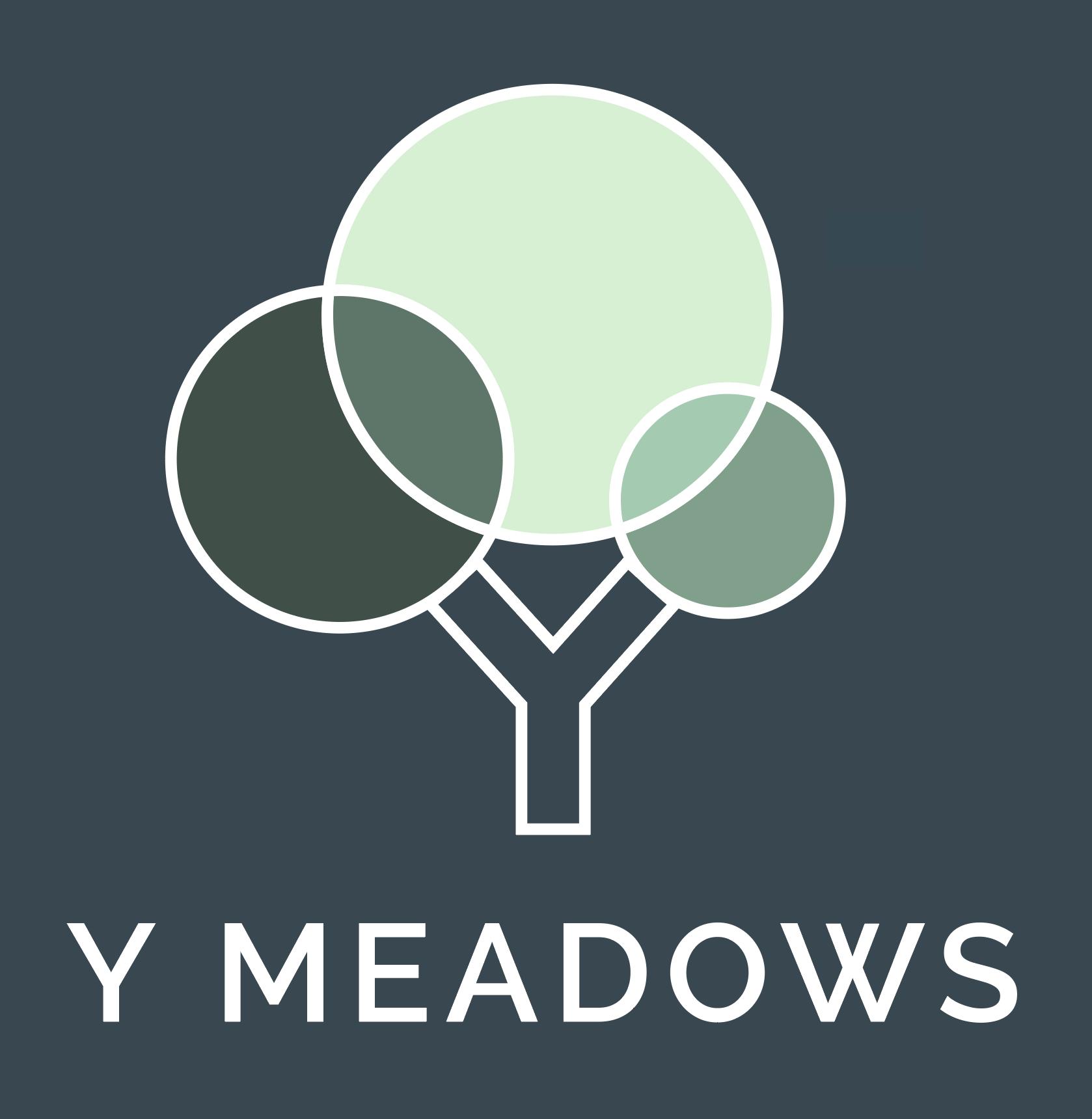 Y Meadows