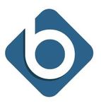 Banyon Fund Accounting