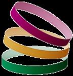 ReadySetAuction logo