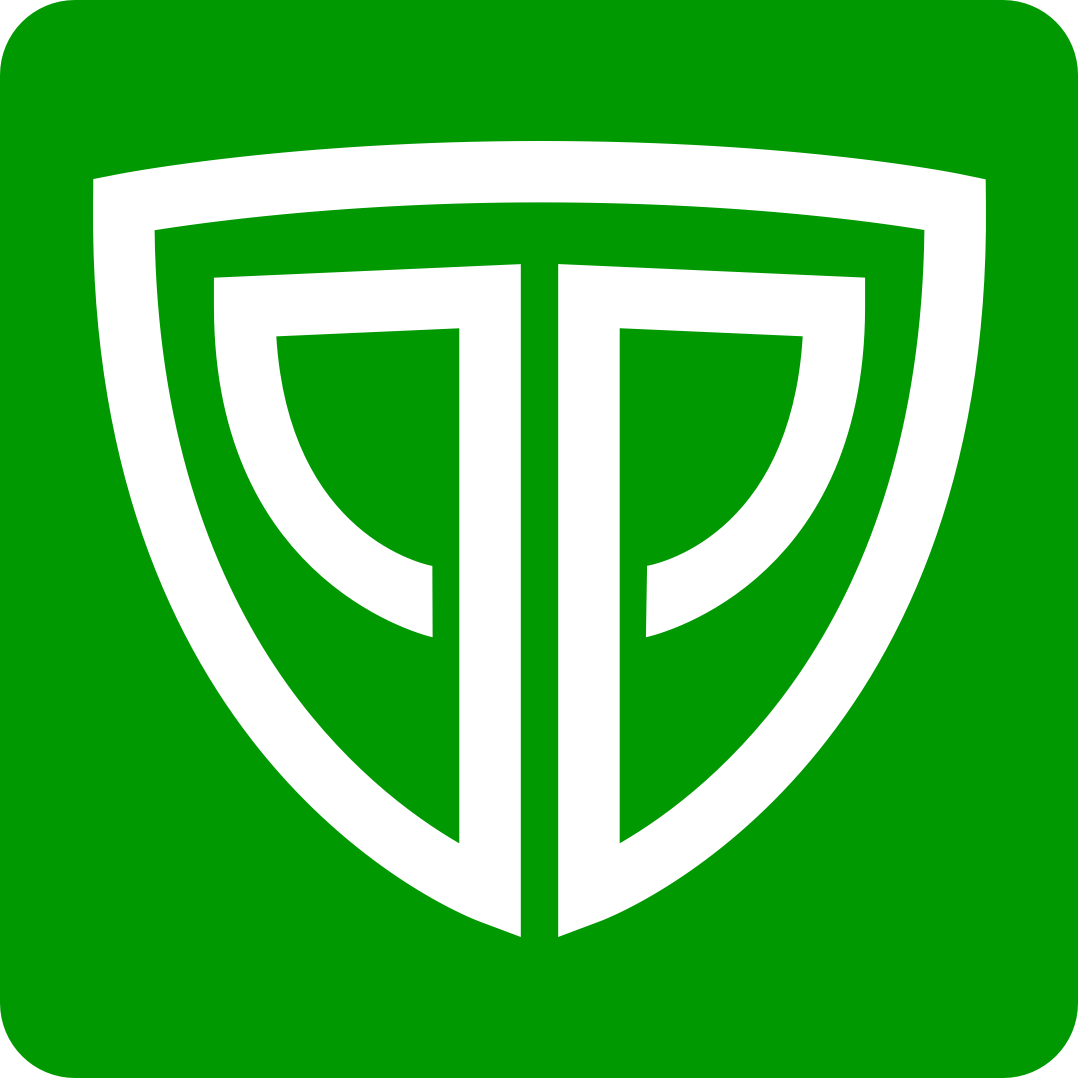 PLAYINGA logo