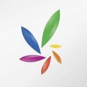 Palo Pro logo