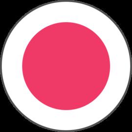 SalonTarget Logo