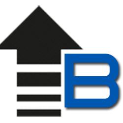 Bizstim logo
