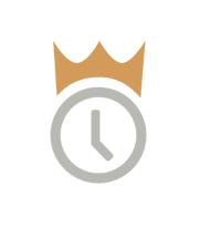 WiseTime logo