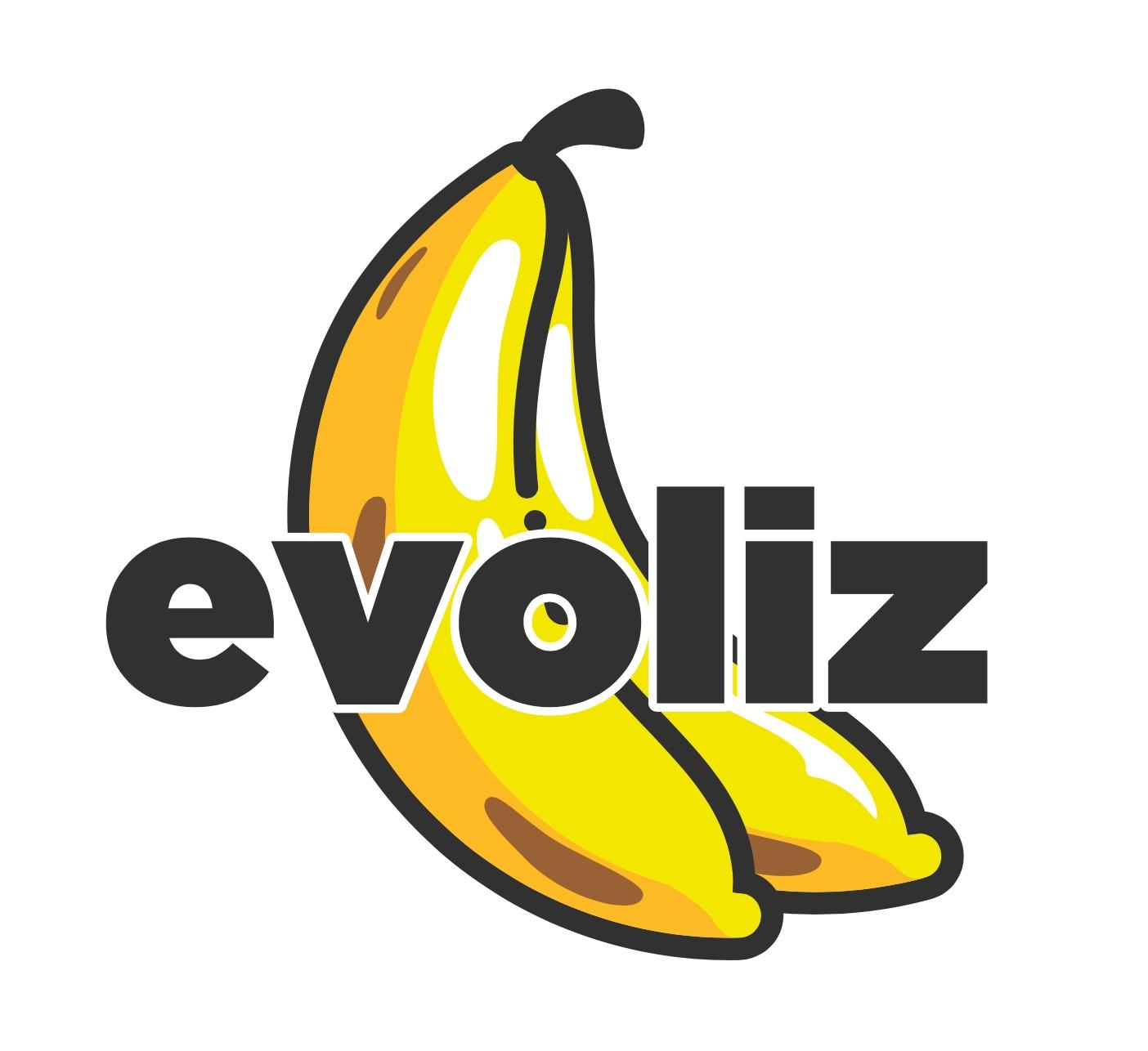 Evoliz