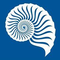 Blueshell logo