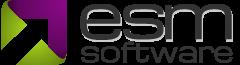 ESM+Strategy logo