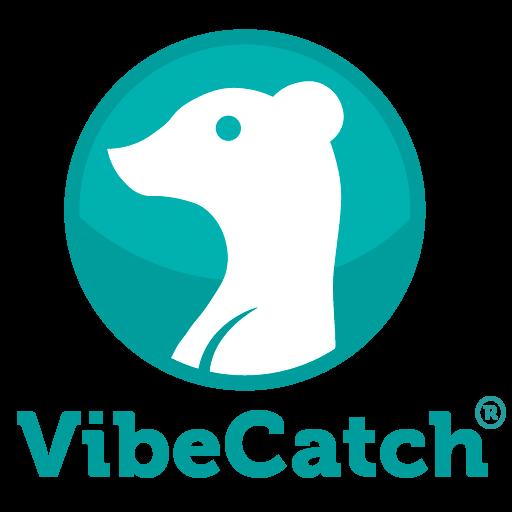 VibeCatch