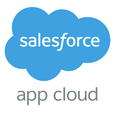 Salesforce Platform