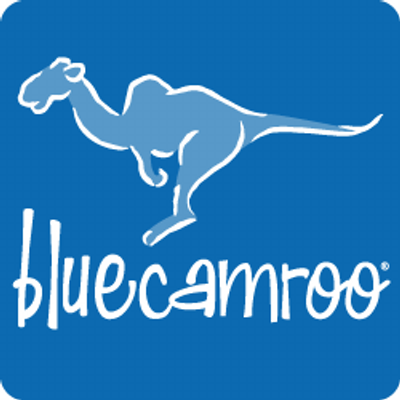 BlueCamroo logo