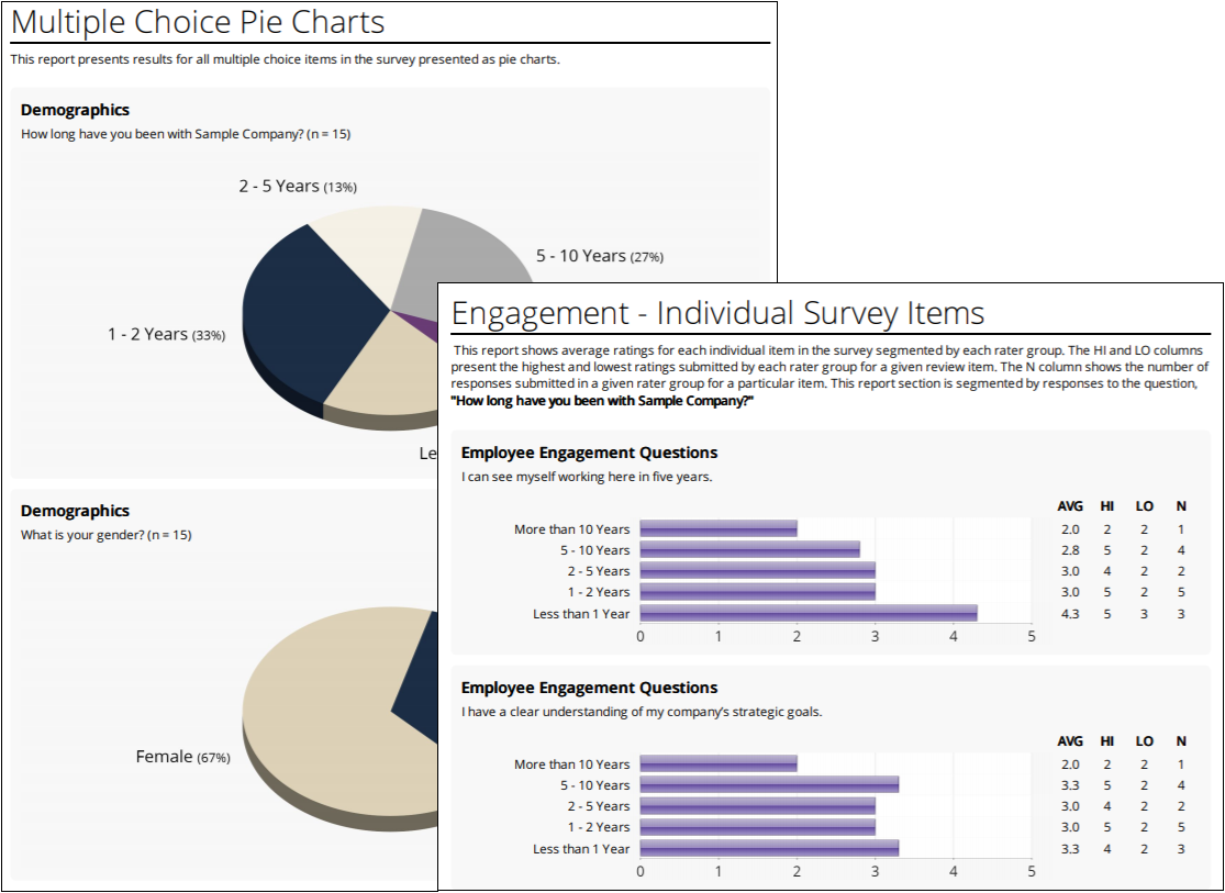 EchoSpan offers an Employee Engagement module with unlimited customization options for your survey items as well as reports.