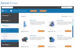 Capture d'écran pour Cincom CPQ : PumpDemo-PumpOptions