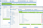 Sigma Conso Consolidation & Reporting screenshot: Sigma Conso offers several possibilities for data entry