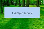 SurveyLab Software - Custom skins