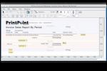 PrintPoint screenshot: PrintPoint sales report editor