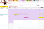 iGo Figure screenshot: iGo Figure's calendar displays events differently based on whether they are pending approval, approved, or confirmed