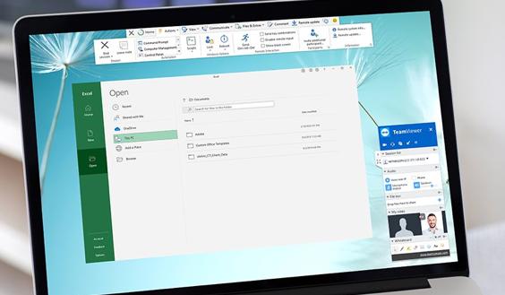 TeamViewer Software - 3