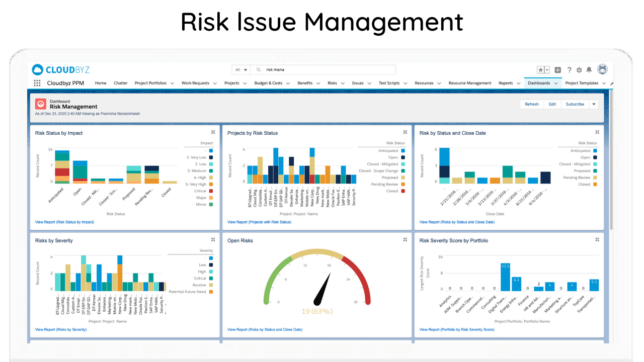 Risk Issue Management