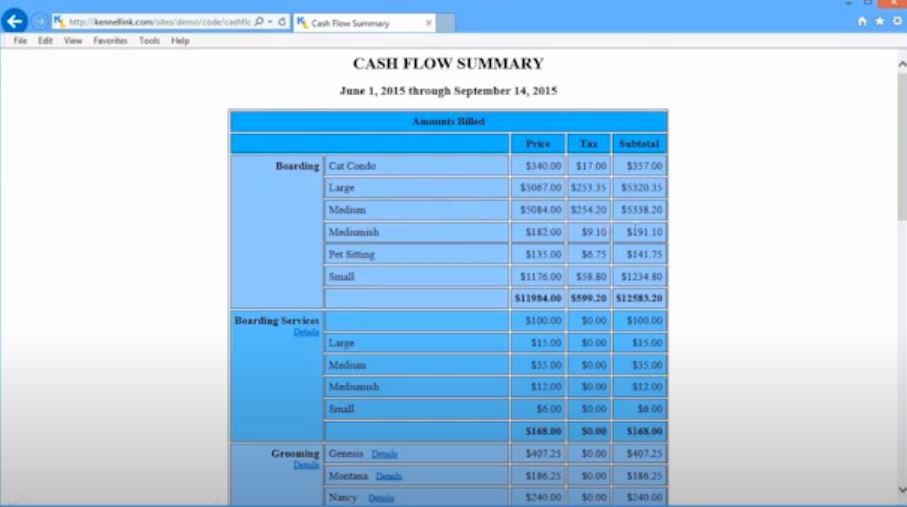 Kennel Link cash flow summary