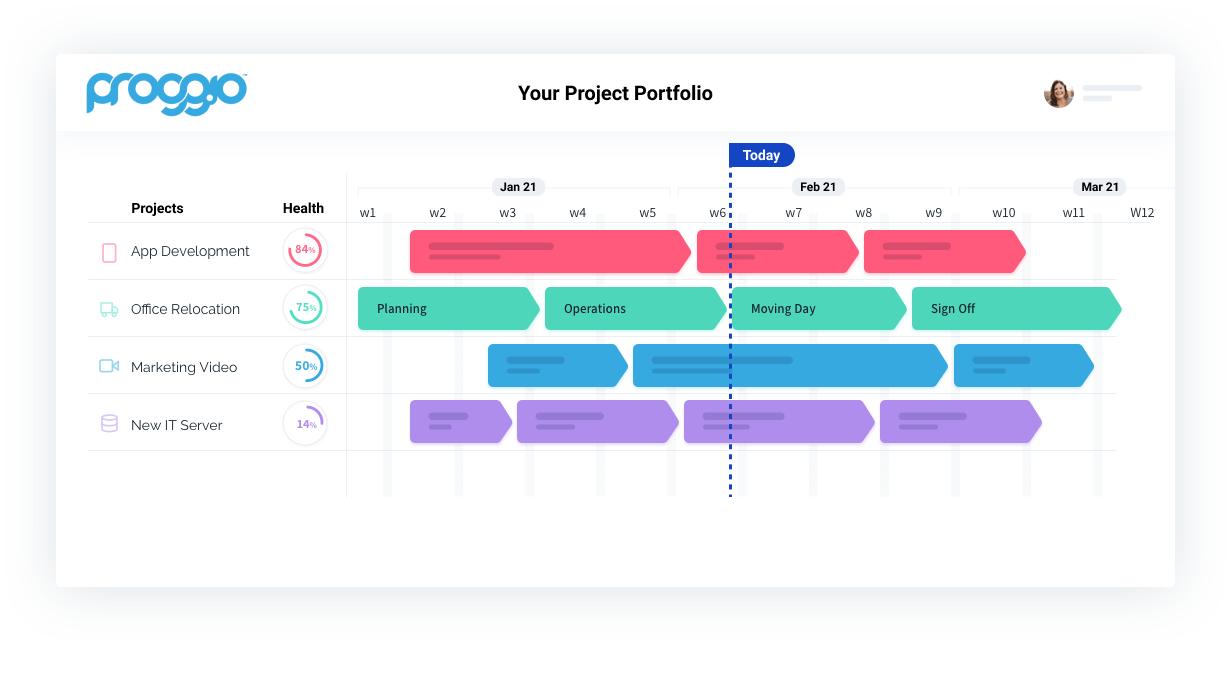 Proggio Software - Project Portfolio View