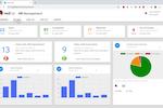 Capture d'écran pour Red Hat Process Automation Manager : RedHat activity dashboard