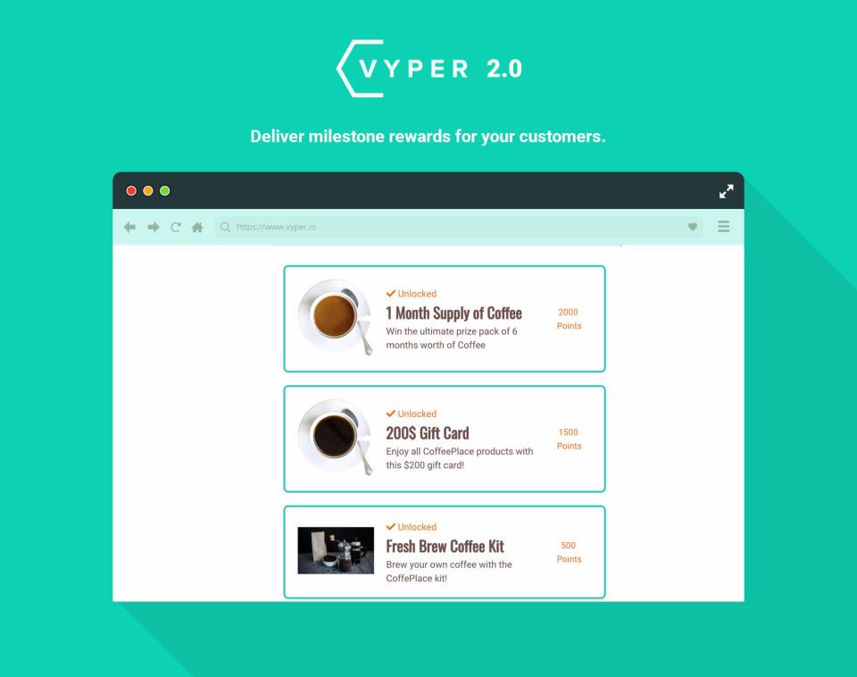 VYPER Software - 4