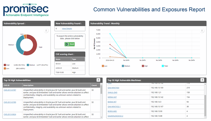 Promisec Endpoint Manager vulnerabilities report