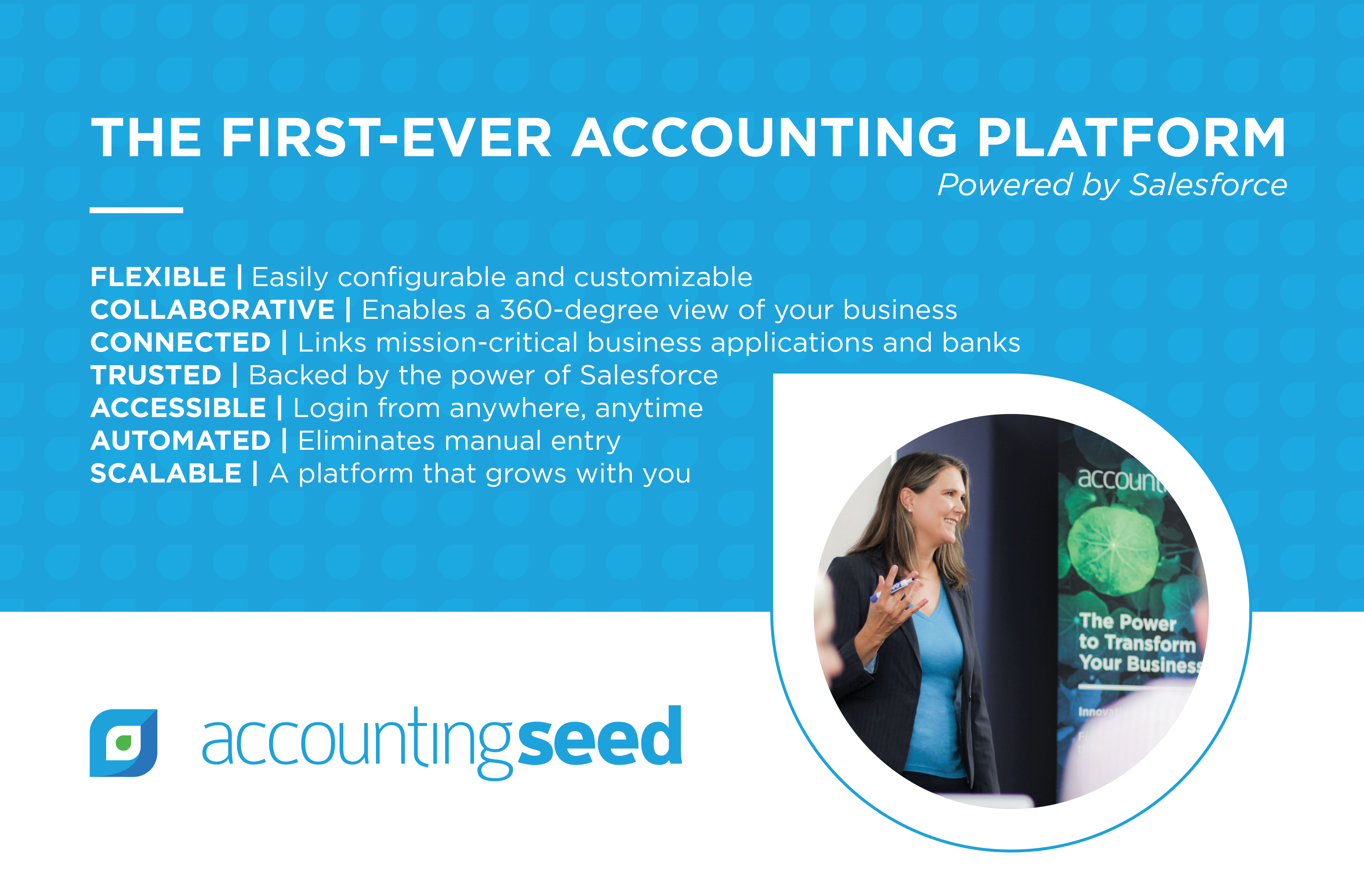 Accounting Seed Features