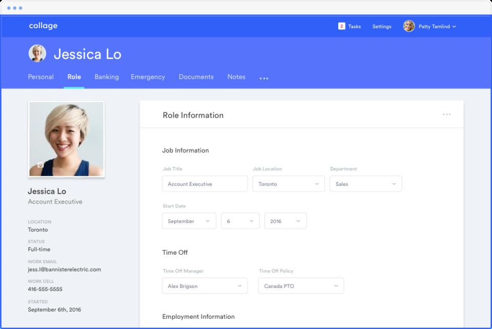 Collage Software - HR-Dashboard
