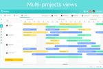 Captura de pantalla de Beesbusy: Beesbusy manage multiple projects