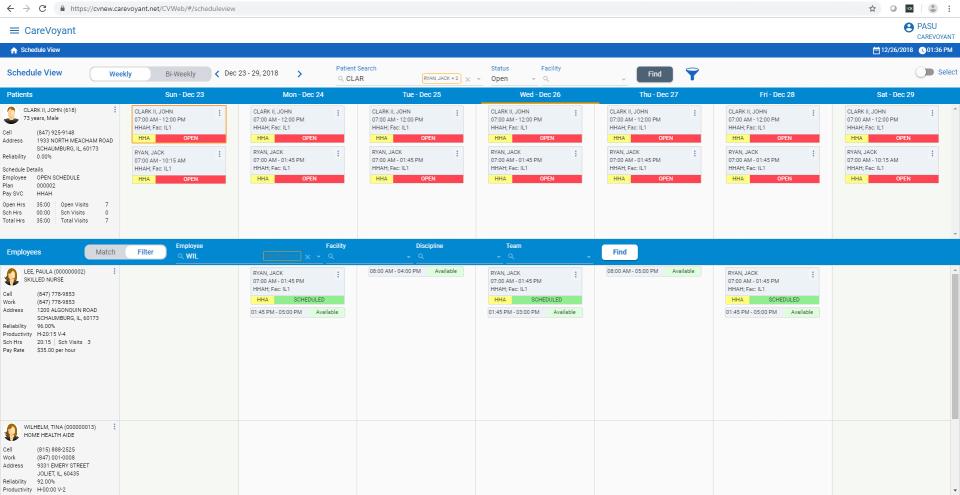 CareVoyant scheduler view