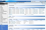 SAP Customer Experience Software - Corporate accpunt view in SAP CRM On Demand