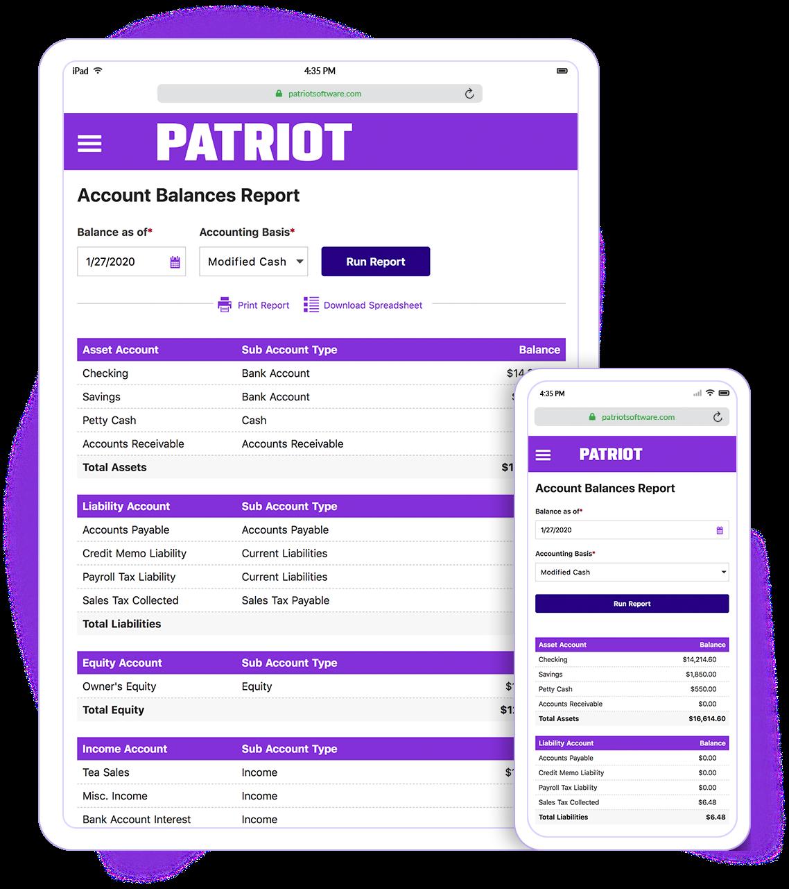 Patriot Accounting Software - Account Balances Report