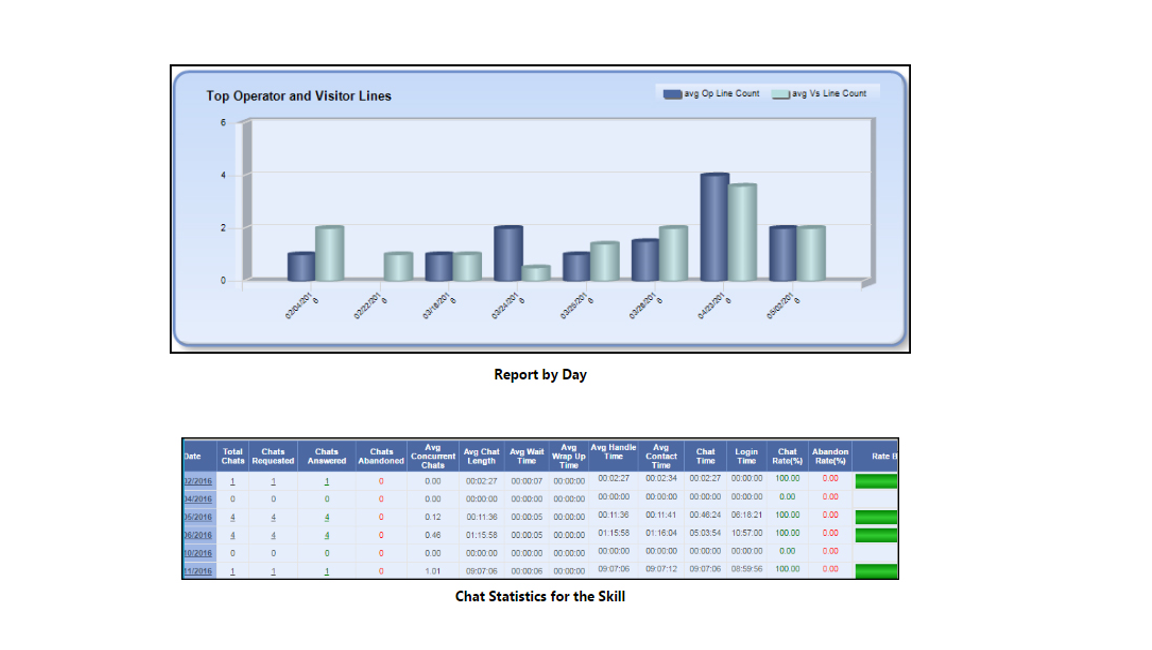 ICE Click-to-Chat Software - Reporting & analytics