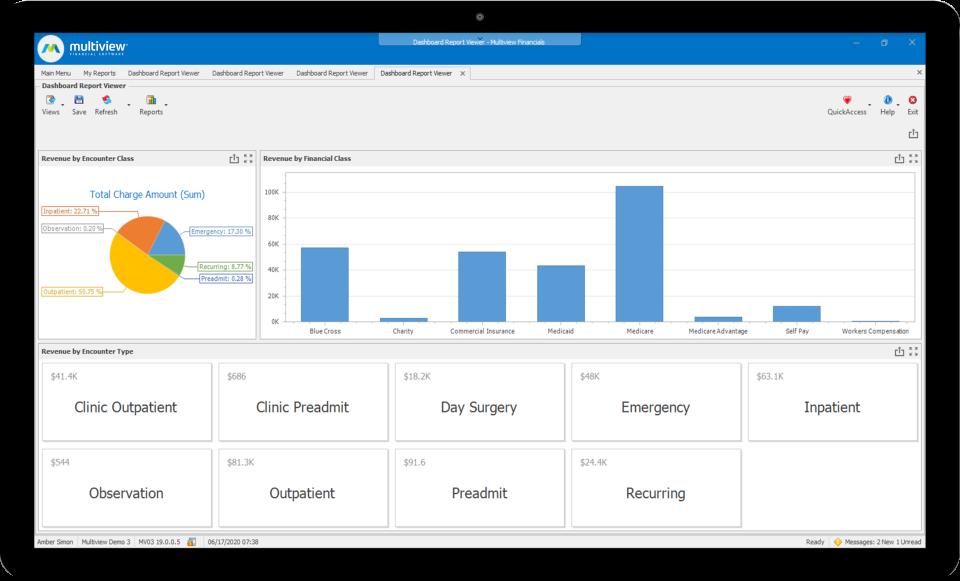 Multiview ERP Software - Revenue Breakdown