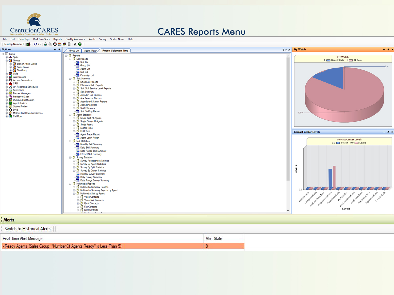 CARES Reports Search