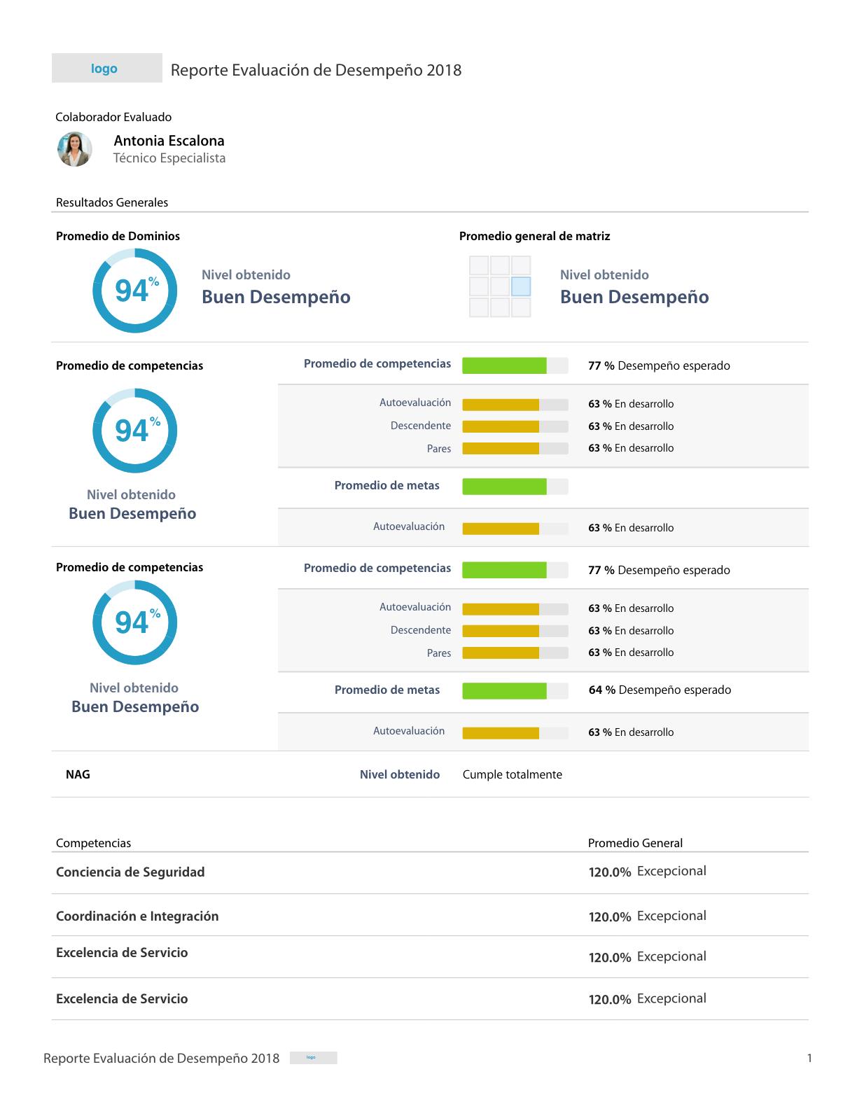 Rankmi PDF reports