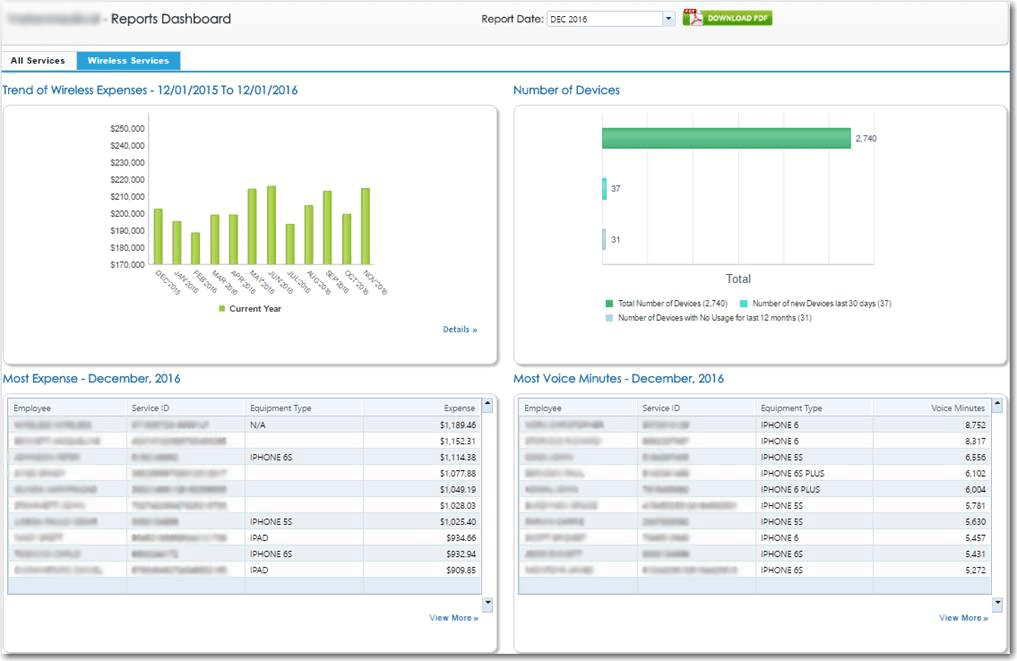 Get a quick view of the wireless dashboard to track expenses by month, year, device, employee, and more