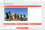 Gingr screenshot: Create report cards for customers based on behavior