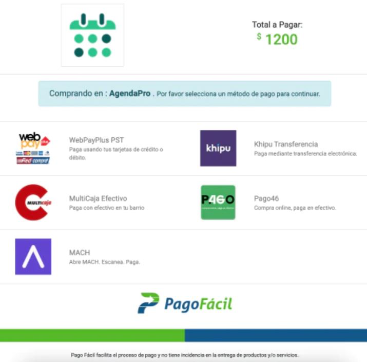 AgendaPro online payments