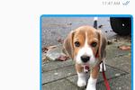 DoTimely screenshot: